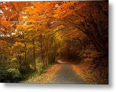 Through The Autumn Glory Metal Print