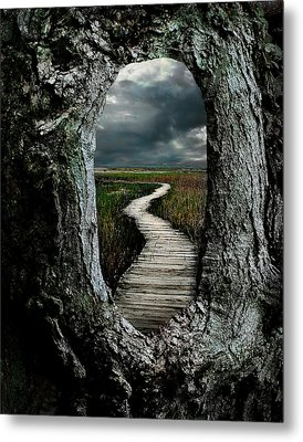 Through The Knot Hole Metal Print by Rick Mosher