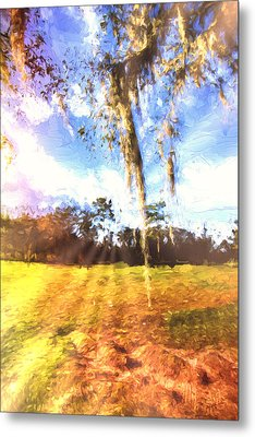 Through The Moss Metal Print by Annette Berglund
