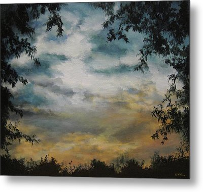Through The Trees Metal Print by Diane Kraudelt