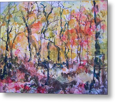 Through The Trees Metal Print by Sandy Collier