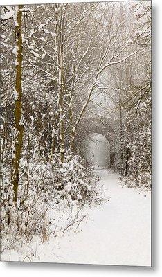 Through The Trees Through The Snow Metal Print