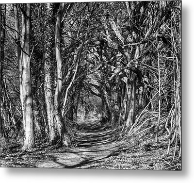 Through The Tunnel Bw 16x20 Metal Print
