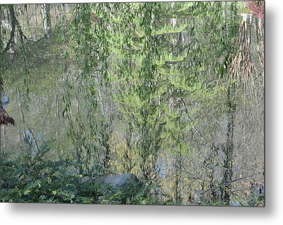 Metal Print featuring the photograph Through The Willows by Linda Geiger