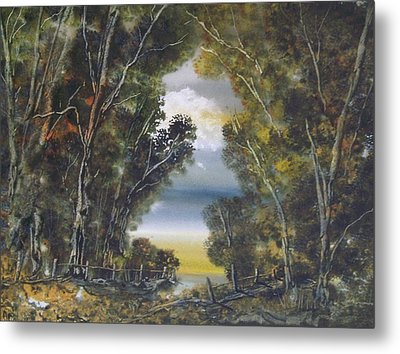 Through The Woods Metal Print by Andy Davis