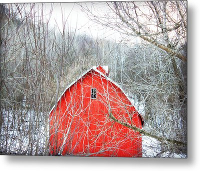 Metal Print featuring the photograph Through The Woods by Julie Hamilton