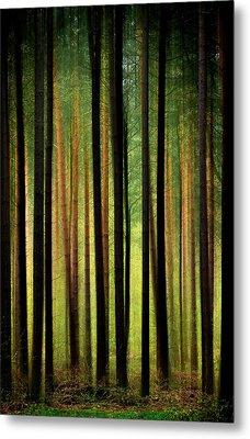 Through The Woods Metal Print by Svetlana Sewell