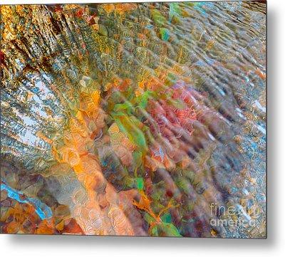 Tidal Pool And Coral Metal Print