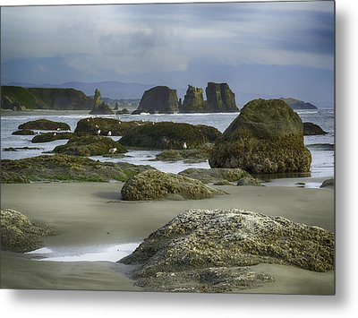 Metal Print featuring the photograph Tidepool Fade by Rob Wilson