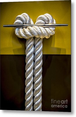 Tied Up In Knots Metal Print by James Aiken