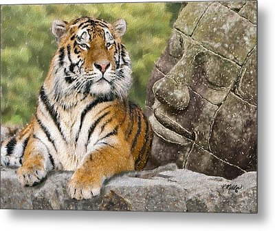 Tiger And Buddha Metal Print