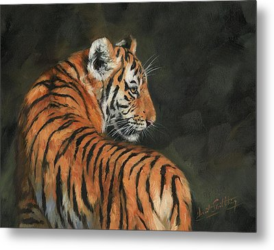 Metal Print featuring the painting Tiger At Night by David Stribbling