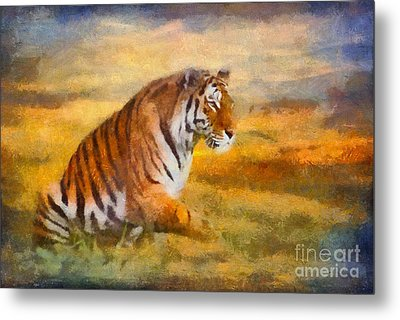 Tiger Dreams Metal Print