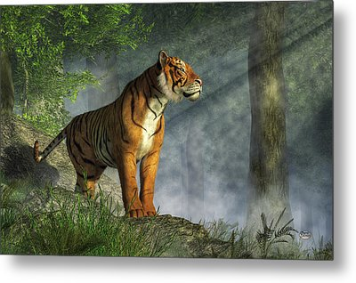 Tiger In The Light Metal Print