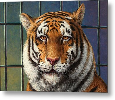 Tiger In Trouble Metal Print by James W Johnson