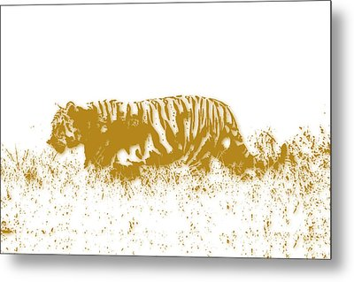 Tiger Metal Print by Joe Hamilton
