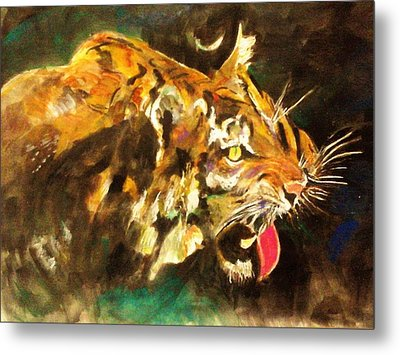 Tiger Metal Print by Khalid Saeed