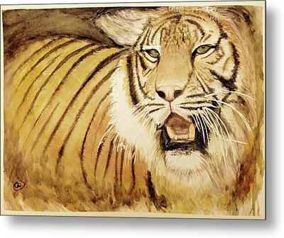 Tiger King Metal Print