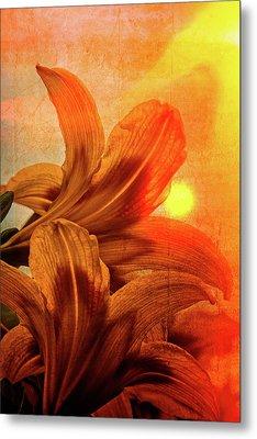 Tiger Lilies Metal Print by Debra and Dave Vanderlaan