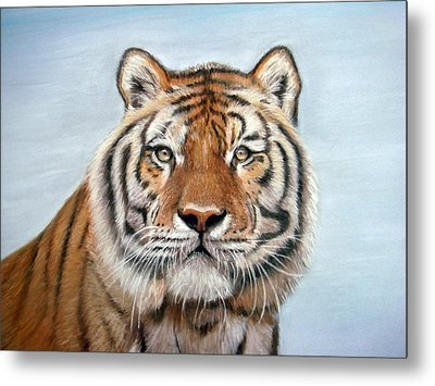 Tiger Metal Print by Mary Mayes