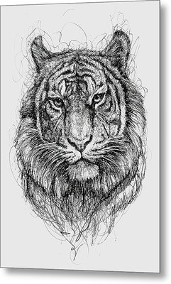 Tiger Metal Print by Michael Volpicelli