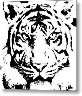 Tiger Metal Print by Now