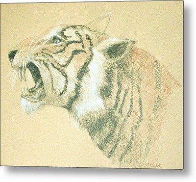 Tiger Roaring Metal Print