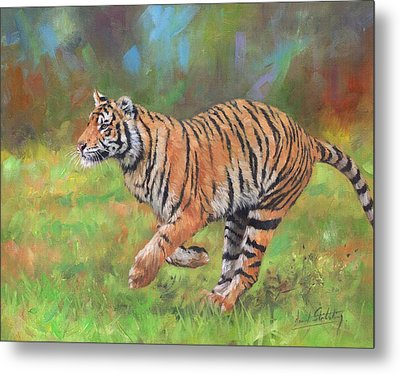 Metal Print featuring the painting Tiger Running by David Stribbling