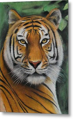 Tiger - The Heart Of India Metal Print