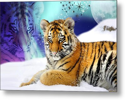Tiger Treasures Metal Print by Julie L Hoddinott