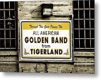 Tigerland Band Metal Print by Scott Pellegrin