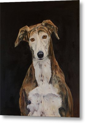 Tilly The Lurcher Metal Print by Kathryn Bell