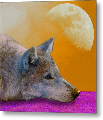 Timber Wolf Under The Moon Metal Print by Tina B Hamilton