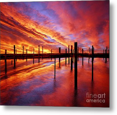 Time Stands Still Metal Print by Jacky Gerritsen