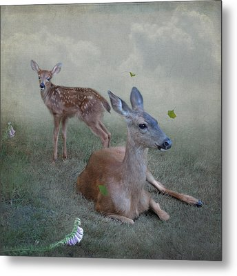 Time Stops For Deer Metal Print by Sally Banfill