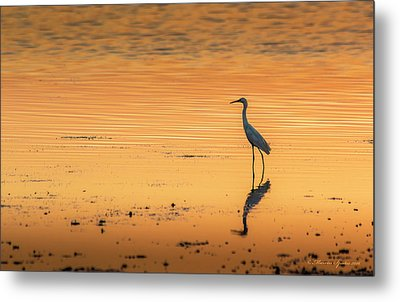 Time To Reflect Metal Print by Marvin Spates