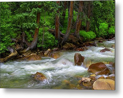 Metal Print featuring the photograph Timeless by Tim Reaves