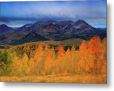 Metal Print featuring the photograph Timpanogos With Golden Aspens. by Johnny Adolphson