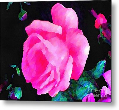 Tinged Pink Rose Metal Print by Catherine Lott