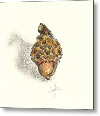 Tiny Acorn Metal Print by Christine Camp