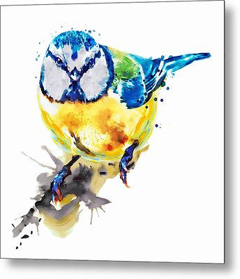 Tiny Colorful Bird Metal Print