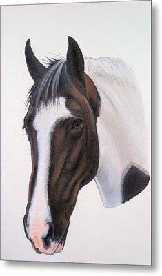 Tippy Metal Print by Lucy Deane