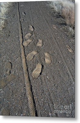 Tire Tracks And Foot Prints Metal Print by Heather Kirk