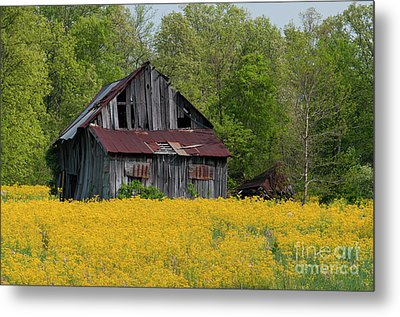 Metal Print featuring the photograph Tired Indiana Barn - D010095 by Daniel Dempster