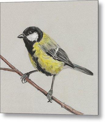 Tit Bird Metal Print by Masha Batkova