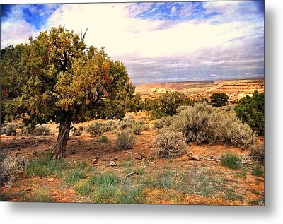 To The Horizon Metal Print by Marty Koch