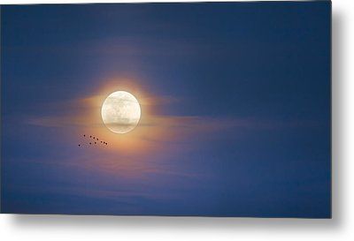 To The Moon Metal Print by Bill Wakeley