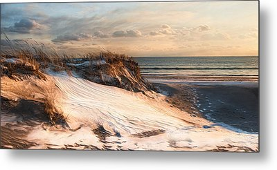 Metal Print featuring the photograph To The Sea by Robin-lee Vieira