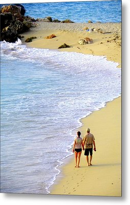 Together Alone Metal Print by Karen Wiles
