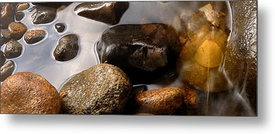 Together As One Metal Print by Steven Milner